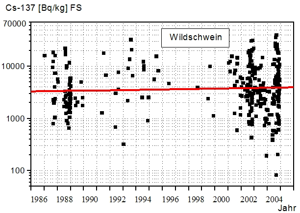 Entwicklung der Cäsium 137 Kontamination von Wildschweinen