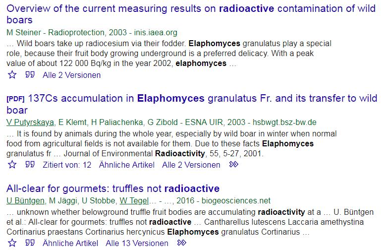 Beispiel für eine vertiefte Suche beu GoogleScholar